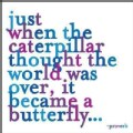 Just When the Caterpillar Journal (Notebook / blank book)