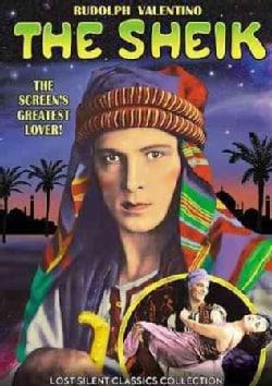 The Sheik (DVD)