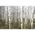 'Aspen Highlands' Canvas Print
