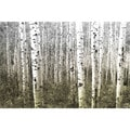Parvez Taj 'Aspen Highlands' Canvas Print