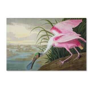 John James Audubon 'Roseate Spoonbill' Canvas Art