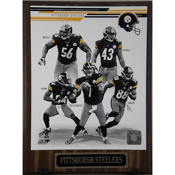 Pittsburgh Steelers 2013 Plaque