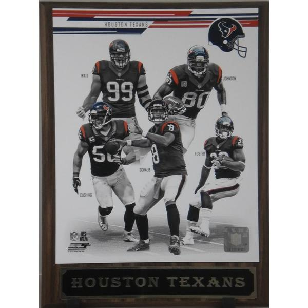 2013 Houston Texans Plaque