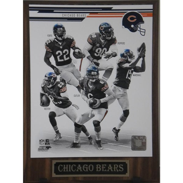 Chicago Bears 2013 Team Photo Plaque