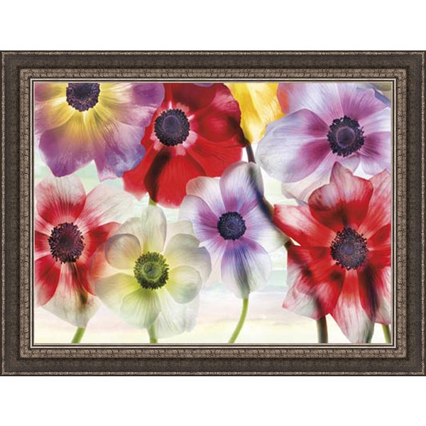 Harold Davis 'Vibrance' Framed Art Print 12111871