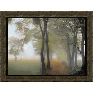 Steven Mitchell 'Misty Path' Framed Art Print