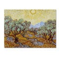 Vincent van Gogh 'Olive Trees 1889' Canvas Art