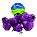 PetSafe 'Busy Buddy' Treat Dispensing Barnacle Dog Toy with Buddy Oh's Treats (4.5 ounces)