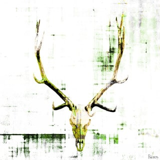 Parvez Taj 'Antler' Canvas Art