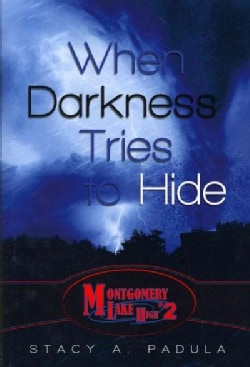 When Darkness Tries to Hide (Paperback)