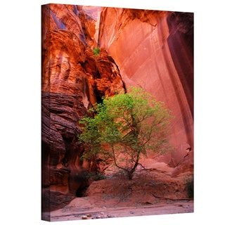 Art Wall Dan Wilson 'Utah-Green Tree Red Canyon' Gallery-Wrapped Canvas