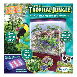 LED Light Cube Terrariums Tropical Jungle