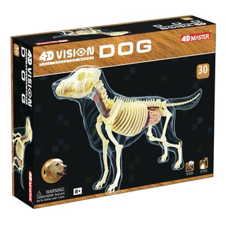4D Vision Full Skeleton Dog Model