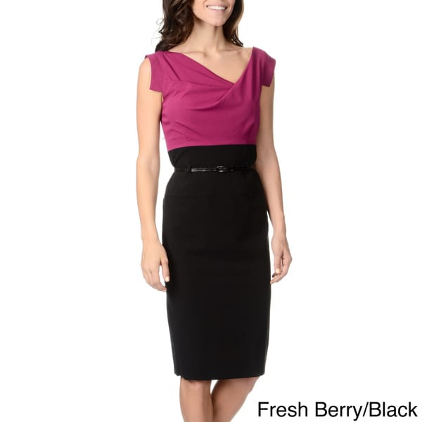 Chelsea & Theodore Women's Two-tone Sheath Dress
