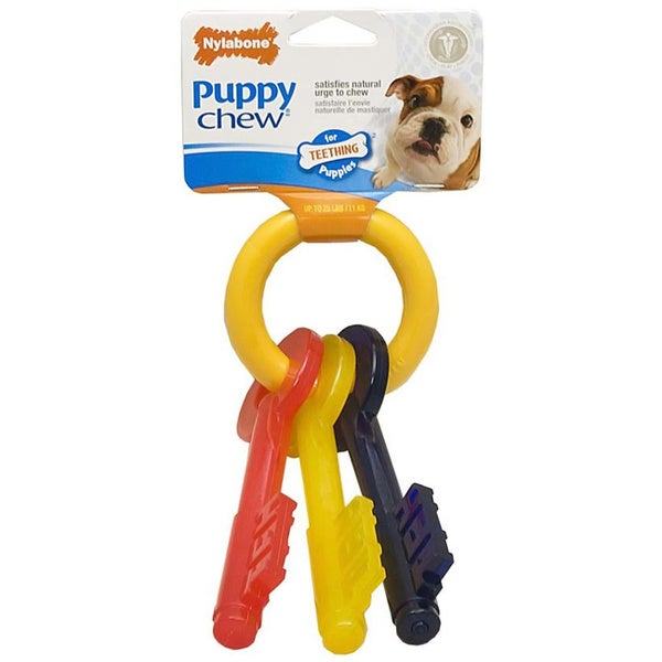 Nylabone Puppy Teething Keys Dog Chew/ Mini Skinneez Squirrel Set