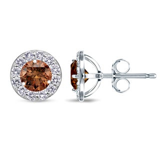 Auriya 14k White Gold 1/2ct to 2ct TDW Brown Diamond Stud Earrings (SI1-SI2)