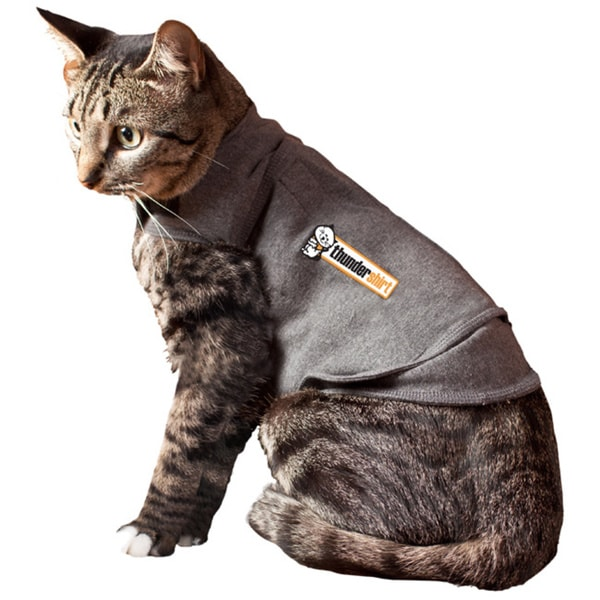 Grey Cat Thundershirt