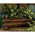 Garden Enthusiast Metal Planter (Set of 3)