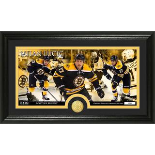 Boston Bruins Milan Lucic Bronze Coin Panoramic Photo Mint