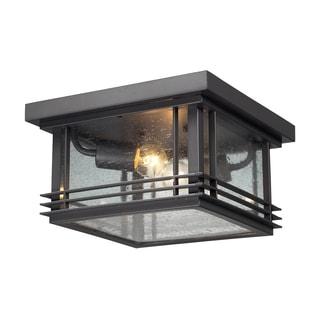 2-light Graphite Outdoor Flushmount Lighting Fixture