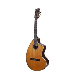 Giannini Craviola Acoustic Electric Guitar/ Custom Hard Case