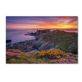 Mathieu Rivrin 'Brittany In Flowers' Canvas Art