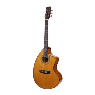 Giannini Craviola Acoustic/ Electric Steel String Guitar with Hard Case