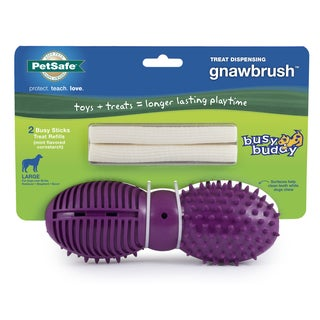 PetSafe Busy Buddy Gnawbrush Pet Dog Toy