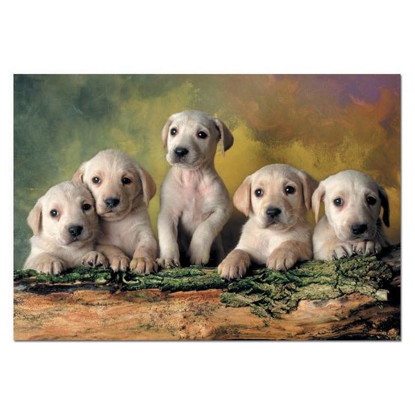 Labrador Retrievers 500-piece Jigsaw Puzzle