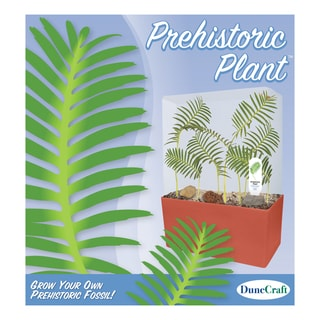 Prehistoric Plant Cube Kit