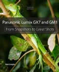 Panasonic Lumix GX7 and GM1: From Snapshots to Great Shots (Paperback)