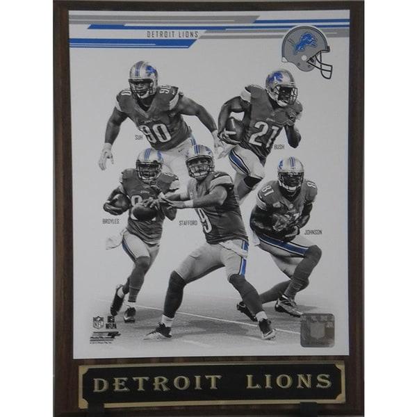 NFL 2013 Detroit Lions Plaque
