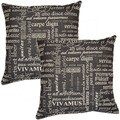 Trilogy Black 17-in Throw Pillows (Set of 2)