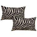 Zambia White 12.5-in Throw Pillows (Set of 2)