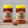 Topanga Quality Orange and Eucalyptus Raw Honey