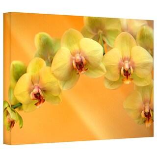 Art Wall Kathy Yates 'Yellow Phalaenopsis' Gallery-Wrapped Canvas