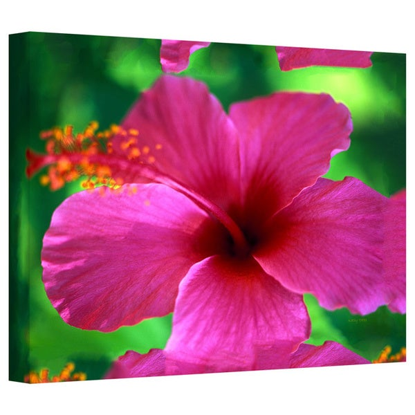Art Wall Kathy Yates 'Maui Pink Hibiscus' Gallery-Wrapped Canvas