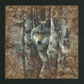 Collin Bogle 'Wolf in Trees Woodland Spirit' Framed Textured Print