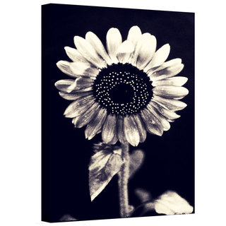 Elena Ray 'Black And White Sunflower' Gallery-wrapped Canvas Art