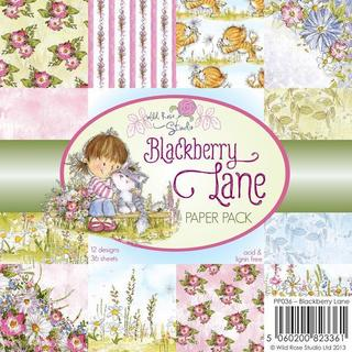 Wild Rose Studio Ltd. 6 X6 Paper Pack 36/Sheets - Blackberry Lane