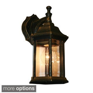 Waterdown 1-light Outdoor Wall Mount