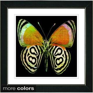 Zhee Singer 'Zebra Butterfly' Framed Fine Art Print