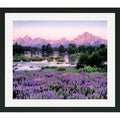 Gary Crandall 'Tetons and Lupine' Framed Matted Art Print