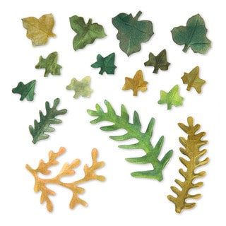 Sizzix Thinlits Leaves/ Fern Die Set by Susan Tierney-Cockburn (12 Pack)