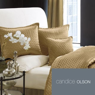Candice Olson Ventura Bronze Duvet Cover and Sham Seperates