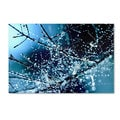 Beata Czyzowska Young 'Blue Rhapsody' Canvas Art
