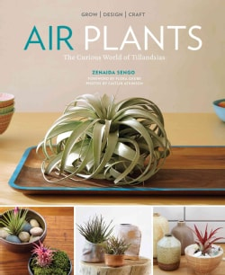 Air Plants: The Curious World of Tillandsias (Paperback)
