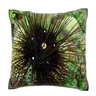 Long Spined Sea Urchin (Diadema Antillarum) 18-inch Velour Throw Pillow