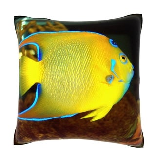 Queen Angel Fish (Holacanthus Ciliaris) 18-inch Velour Throw Pillow