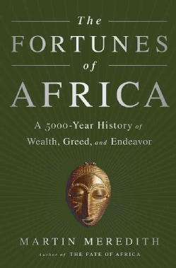 The Fortunes of Africa: A 5000-Year History of Wealth, Greed, and Endeavor (Hardcover)